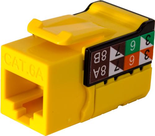 353-V2822/C6AYL
